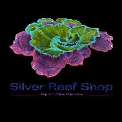 Silver Reef Shop